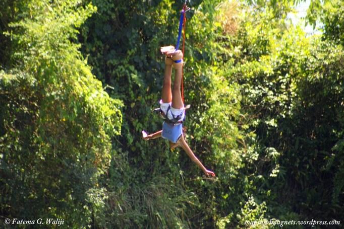 bunjee-jumping-uganda