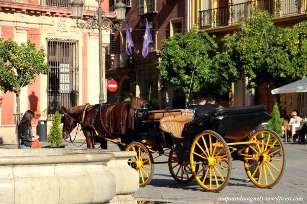 horses-in-seville