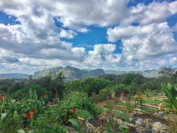 Farm to table restaurant in Vinales in Cuba