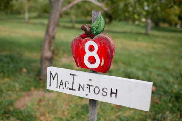 Orchard Hill Farm Cumberland ME