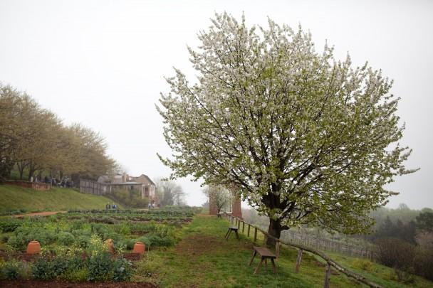 Monticello Spring VA