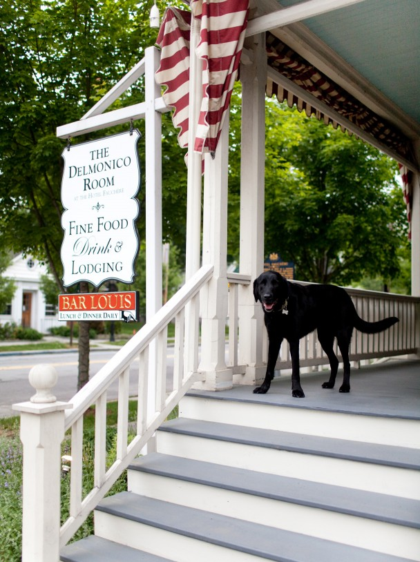 Hotel Fauchere Dogs