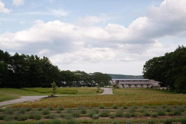 Marianmade Farm Wiscasset