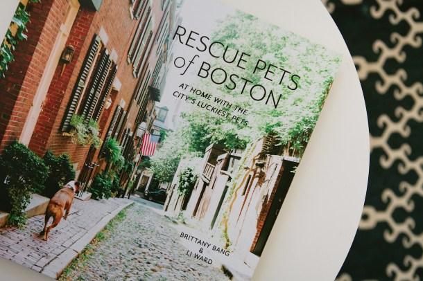 Rescue Pets of Boston