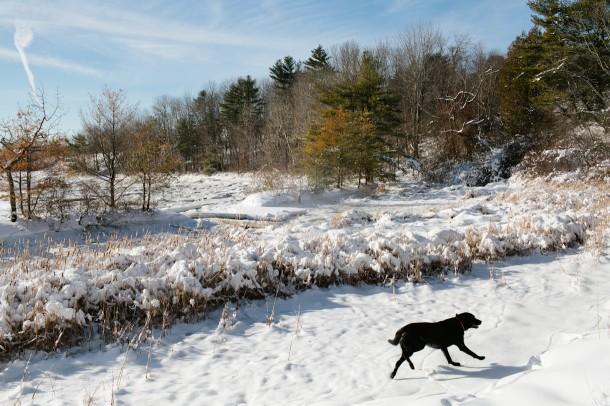 Frozen Sheepscot River Maine