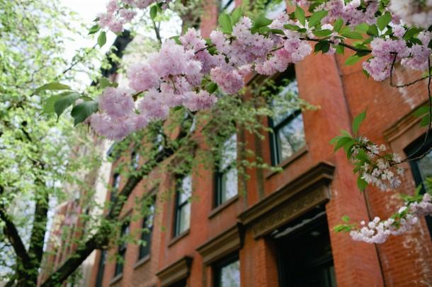 Greenwich Village Travel Guide