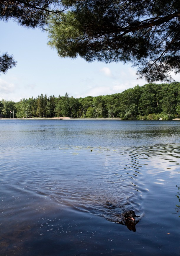 Benedict Pond Great Barrington