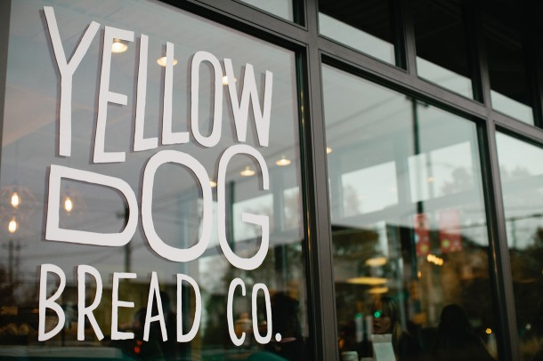 Yellow Dog Bread Co