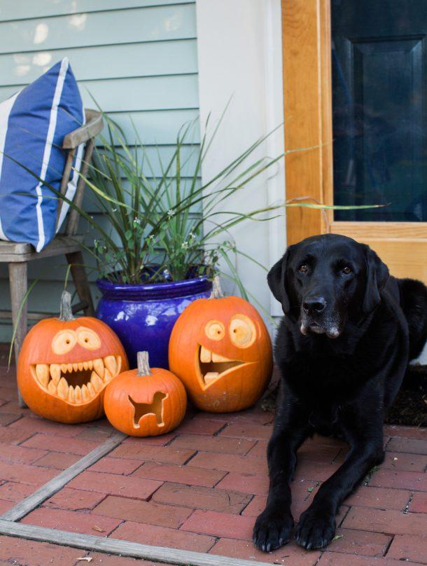 Halloween Pumpkins 2016