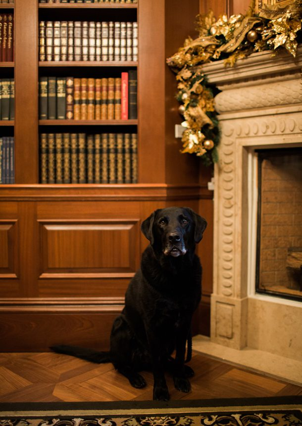 Pets at The Jefferson Hotel, Washington DC by Map & Menu