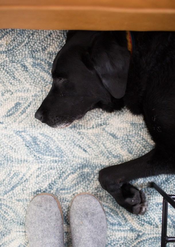 Tired Orvis