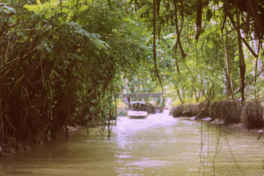 Boating through dense mangroves in Poovar