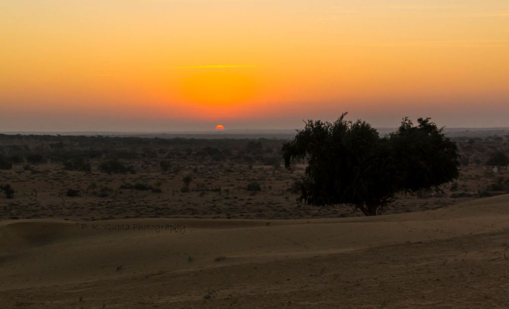 Sunrise in Thar Dessert, Jaisalmer
