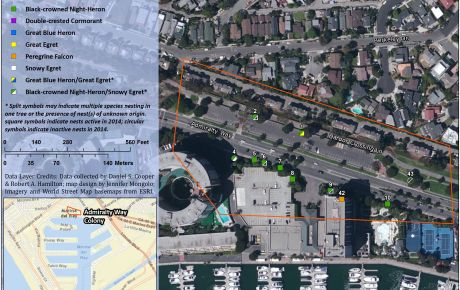 Mapping Services - Marina del Rey