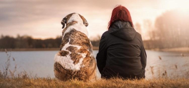 Entendre (enfin) sa petite voix intérieure : un chien et une femme assis de dos, tranquilles.