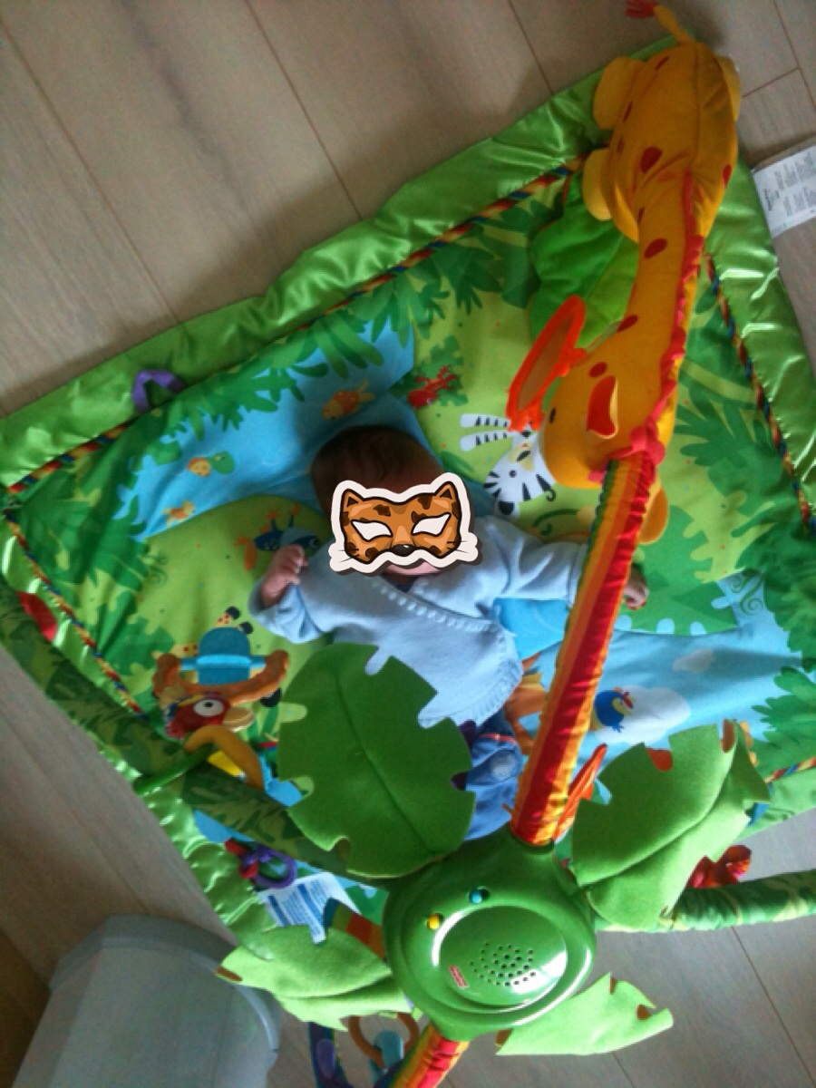 tapis d eveil jungle de fisher price