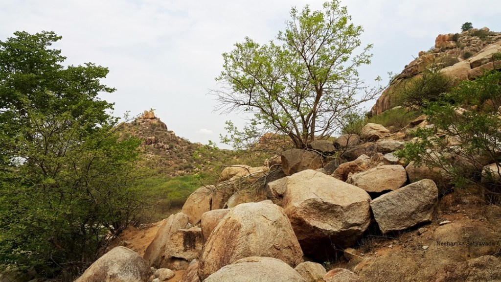 Trekking at Devarakonda Fort makes Nalgonda one of the best offbeat places to visit near Hyderabad on a road trip.