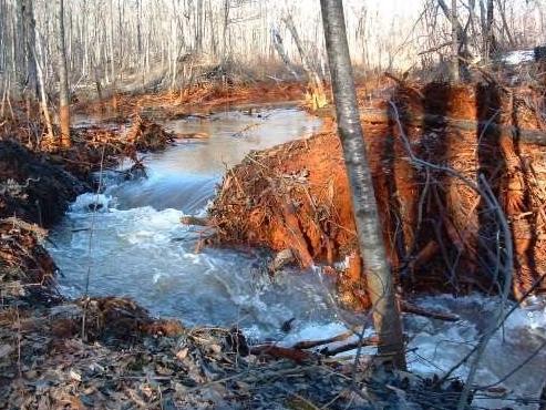 Abandoned Mine Lands