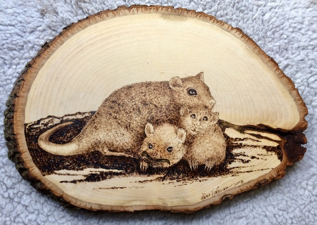 Pyrography family of rats