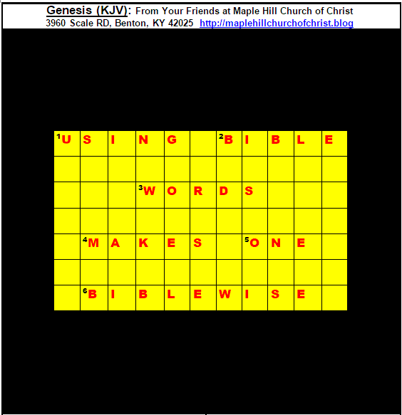 Puzzle.WebsiteLogoDRL
