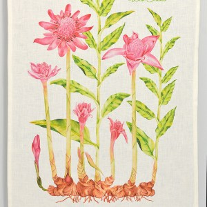 Luxury Linen Tea-towel St. Lucia Botanical Torch Ginger Lily