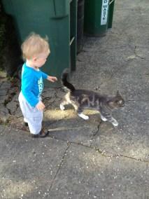 Jamie tries to pet Kitty Jasper