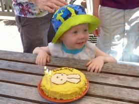 Yellow bunny cake!