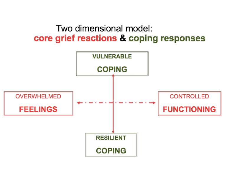 2 Dimenisonal Model