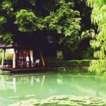Hill Lodge: lush private retreat in the hills of Chiang Mai