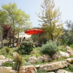 Majda: Mediterranean cuisine in the countryside between Tel Aviv and Jerusalem