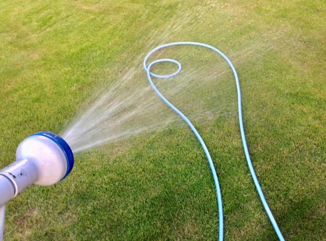 芝生が水不足で枯れた時の対処法【今すぐ対処で復活可能】