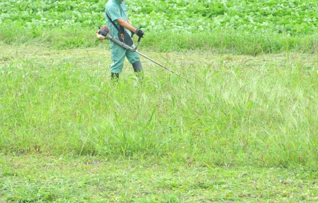 雑草対策と芝刈りが手に負えなくなった時の対処法③ 電動式草刈り機を購入する