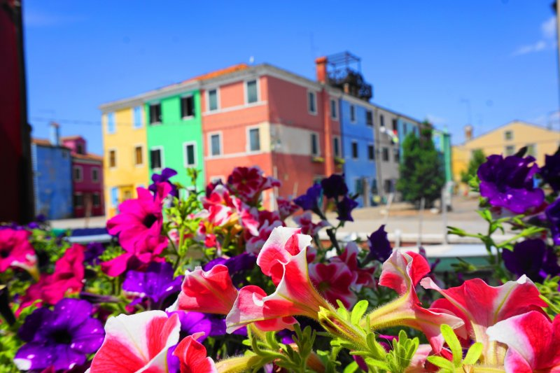 what to do Burano, Italy - colorful houses and flowers