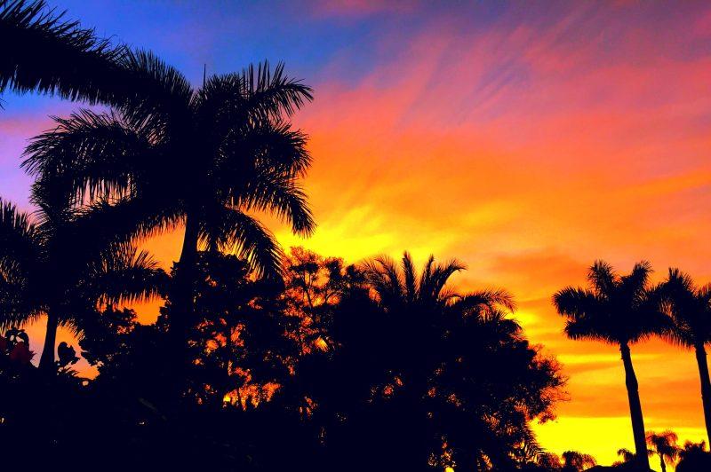 what to do in Sarasota, Florida - Sarasota sunset