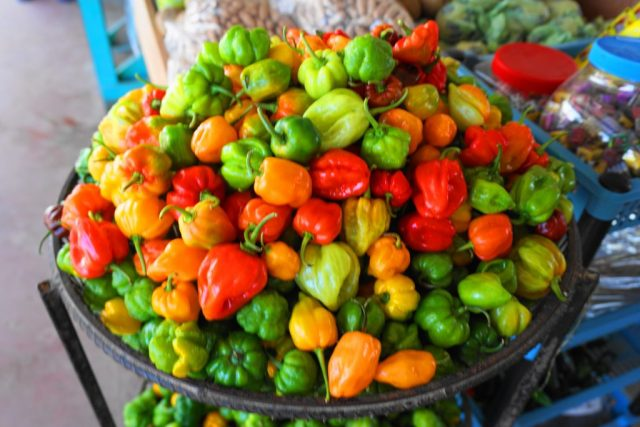 Things to do in San Ignacio, Belize - Farmers Market