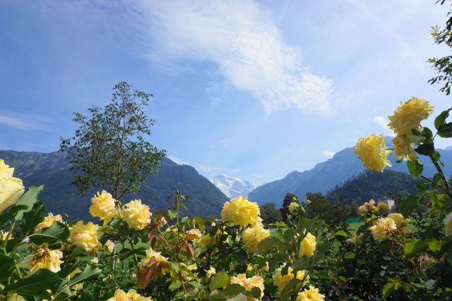 Top 8 Interlaken adventure activities; best things to do in Interlaken, Switzerland; where to stay in Interlaken