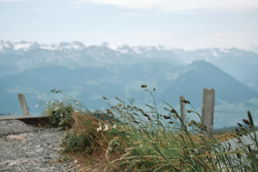 Mt-Rigi-–-the-Panorama-Trail-Ronja-Goes-Abroad-The-Best-Hiking-in-Europe