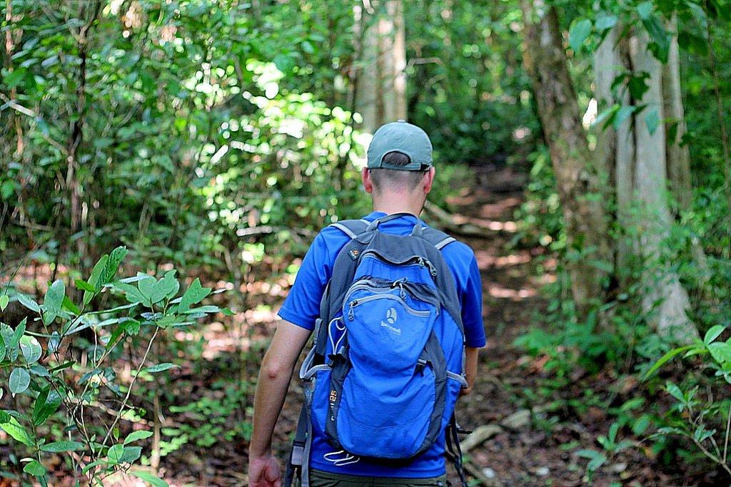 Cat Tien National Park - trekking