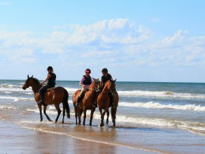 The Top 4 Beaches in Norfolk, England