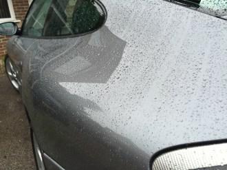 Water Beading On Porsche 911 Bodywork