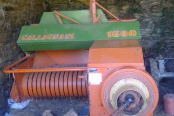 Gallignani,1600,Lugo,2.200,00 EUR