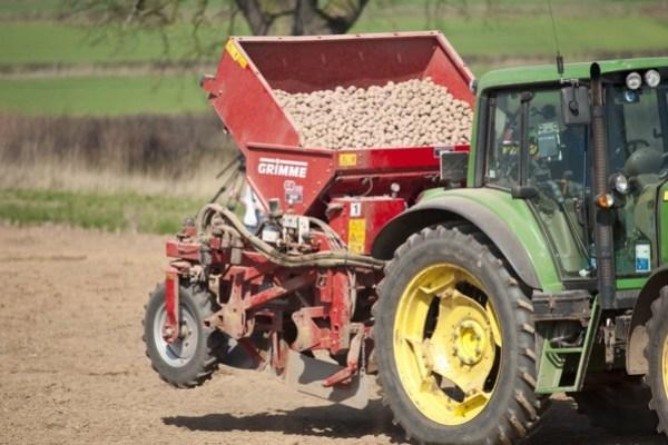 Plantadora de patatas Grimme