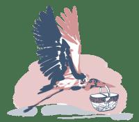 Marabou Services Logo, link to Marabou Services home page