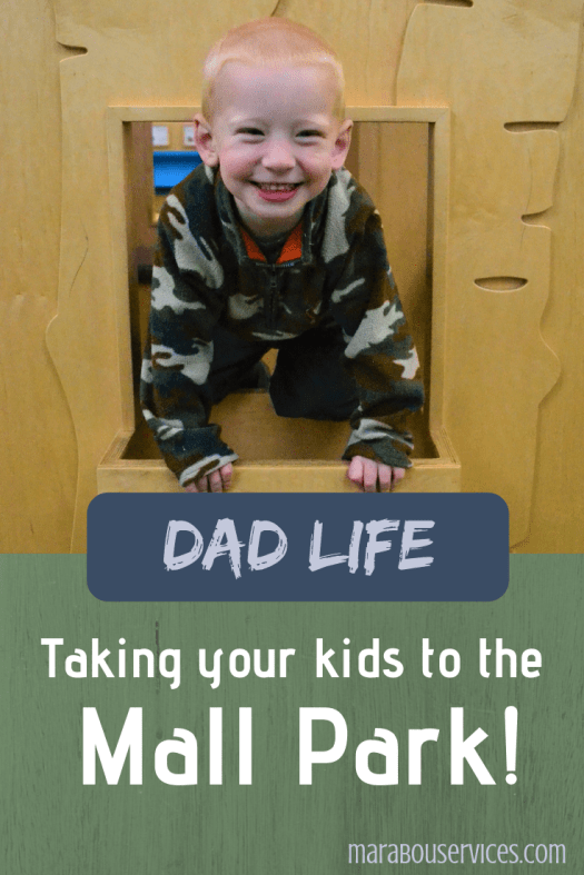 Dad Life: Take Your Kids to the Mall Park!