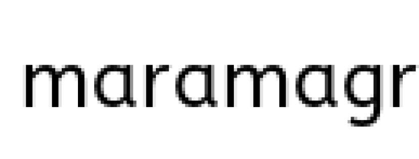 workflow mara assistente virtuale