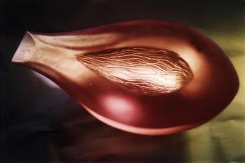 Sheer Husk - Pink