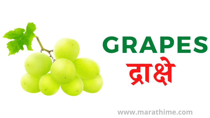 द्राक्षे - Grapes