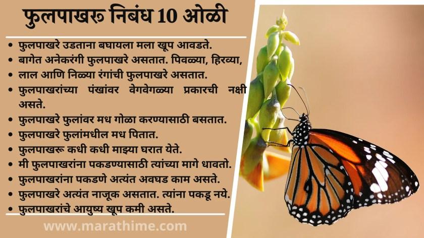 फुलपाखरू निबंध 10 ओळी, 10 Lines Butterfly in Marathi, 10 Lines Essay Butterfly in Marathi