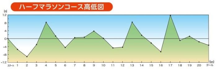 お伊勢さんマラソン コース 高低差