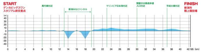 新潟シティマラソン コース 高低差